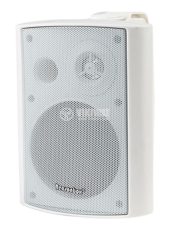 Wall speaker - 1