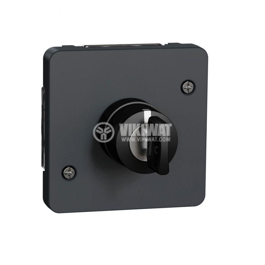 Електрически ключ сх.1 двоен, 3A, 230VAC, за вграждане, сив, MUR35061