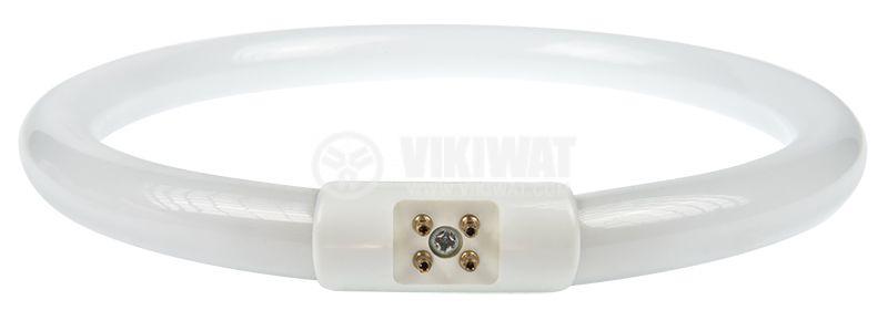 Circular fluorescent tube T5, 22W, ф170mm, 4pins, LAMP-5D-N1-S - 1