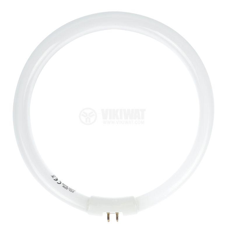 Circular fluorescent tube T5, 22W, ф170mm, 4pins, LAMP-5D-N1-S - 2