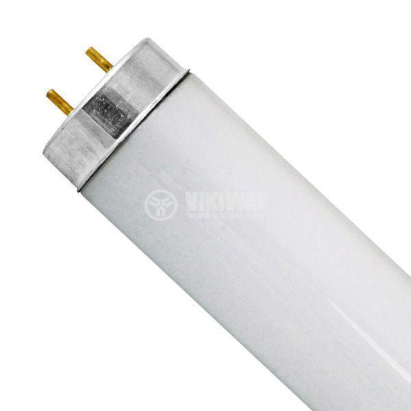Луминесцентна тръба 40W, Т12, бяла, 4200K, 1200mm
