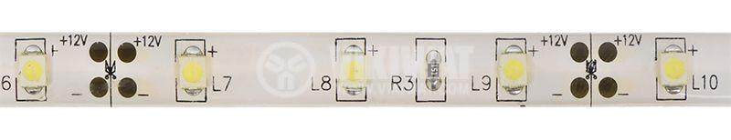 LED лента ECOLINE 3528, 60LED/m, 4.8W/m,12VDC, IP65, влагозащитена, студено бяла, BS45-0202 - 1
