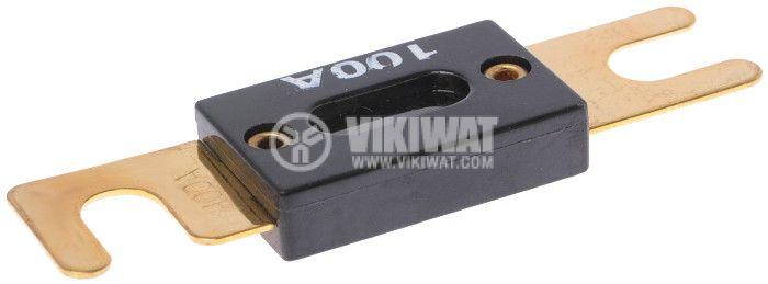 Flat Automotive Fuse, 80VDC, 100A