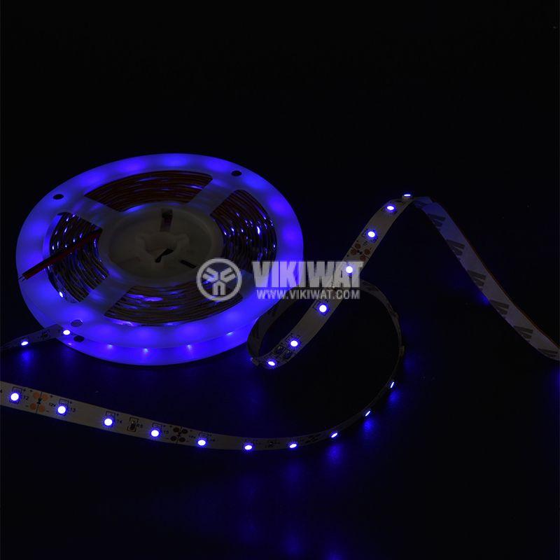 LED лента ECOLINE 3528, 60LED/m, 4.8W/m, 12VDC, IP20, невлагозащитена, синя, BS45-0105 - 2