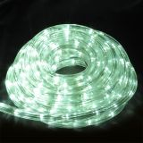 LED illuminated hose, 10m, white, 160LED, 220VAC, IP44, waterproof