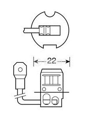 Auto Halogen Lamp, H3, 24V, 70W, PK22s - 2
