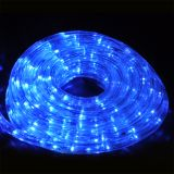 LED illuminated hose, 10m, blue, 160LED, 220VAC, IP44, waterproof