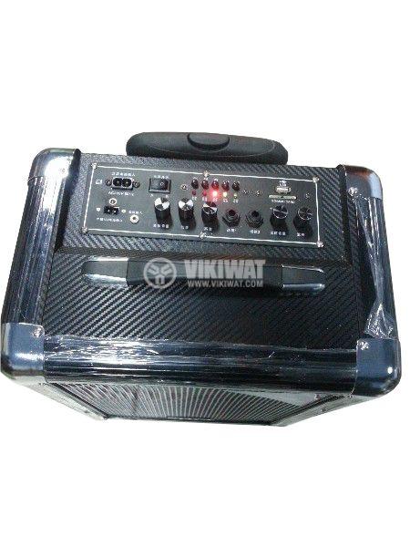 """Portable karaoke system S-10 10"""" 50W 220V 12V - 2"""
