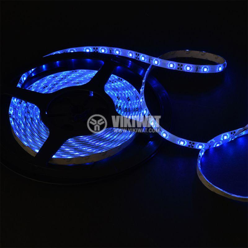 LED лента ECOLINE 3528, 60LED/m, 4.8W/m, 12VDC, IP65, влагозащитена, синя, BL45-0205 - 2