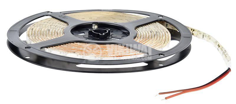LED лента ECOLINE 3528, 60LED/m, 4.8W/m, 12VDC, IP65, влагозащитена, синя, BL45-0205 - 3