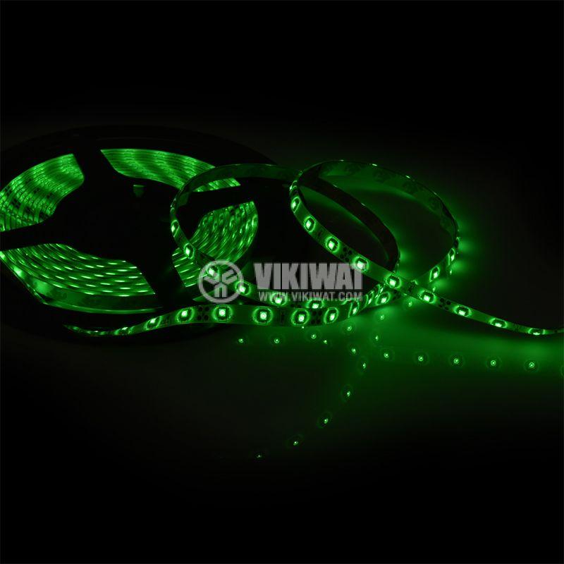 LED лента ECOLINE 3528, 60LED/m, 4.8W/m, 12VDC, IP65, влагозащитена, зелена, BL45-0204 - 3