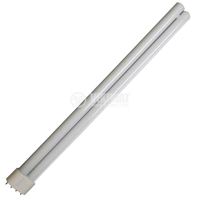 PL Compact Fluorescent Lamp, 55 W, 4P, day light - 1