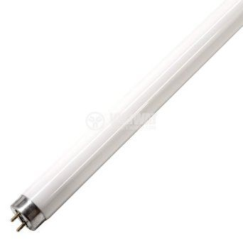 Fluorescent lamp T8